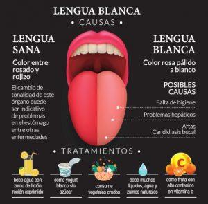 cuantas bacterias viven en nuestra boca